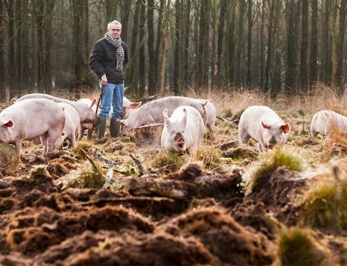 Jan Overesch, biologisch dynamisch akkerbouwer en varkenshouder uit Raalte